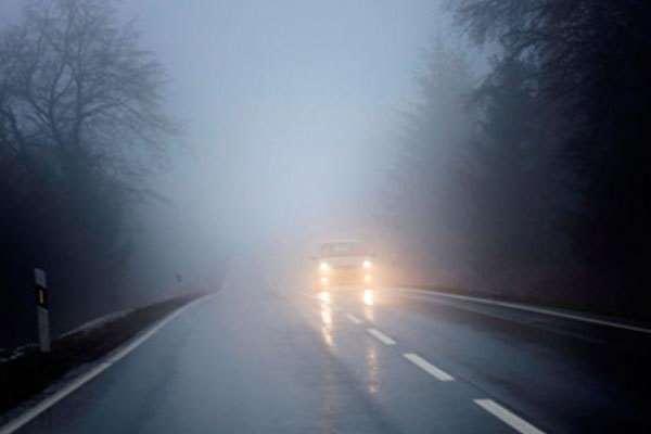 Fog Lamp, Bukan Sekadar Pemanis Wajah